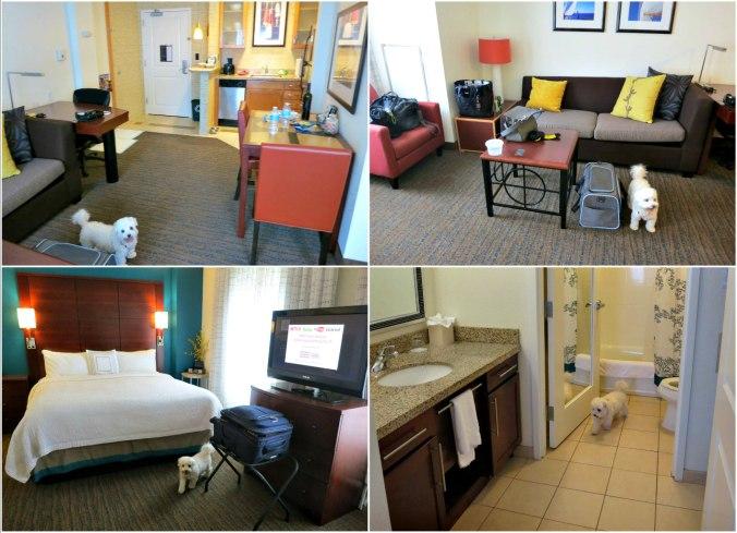Residence Inn.jpg